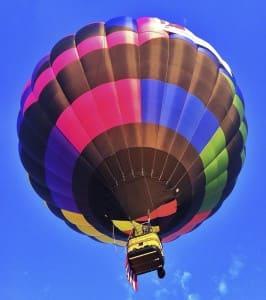 Lynette Shepherd Balloon